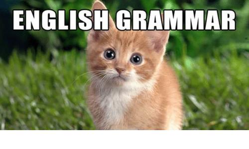 Test z gramatyki angielskiej dla początkujących